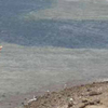 Snorkeling Trip, Camel Ride in Abu Galum, Blue Hole