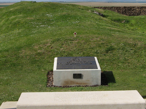 Somme Battlefields Tour - T 80 Photos