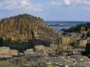 The Giant's Causeway Glens of Atrim, Wirld Atlantic Coast and Belfast city tour (2 days) Photos