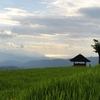 The North of Bali