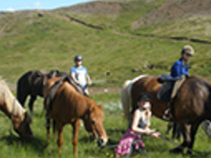 The Viking horse riding tour and the Golden Circle afternoon Photos