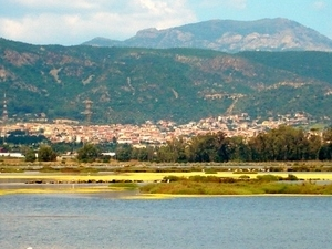 The wetlands of Cagliari Photos