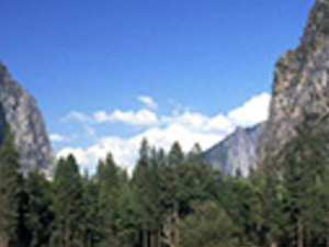 Total Yosemite Experience Photos