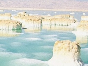 Tour to Petra from Dead sea Photos
