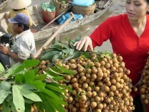 Vietnam Overview In 7 days Photos