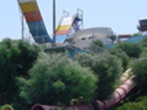 Waterpark Photos
