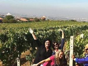 WONDERFUL TUSCANY WINE TOUR IN CHIANTI Photos