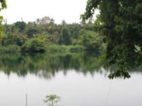 A riverside retreat away from crowd