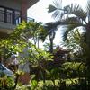 Canang Sari Homestay
