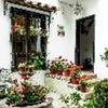 Colonial charm in good old Coyoacan