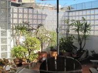 Duplex with sunny terrace Barcelona