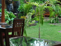 learn Balinese life experience