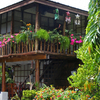 Tropical Home in Panglao Village