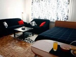 Apartment Otoka