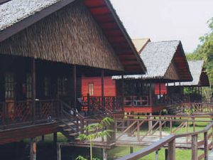 Bilit Rainforest Lodge