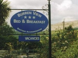 Burren View
