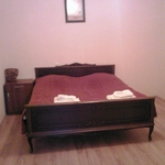 Comfortable Guest Apartment
