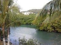 Culebra International