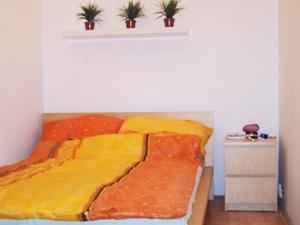 Goldfish Hostel
