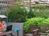 Green Kiwi Backpacker Hostel