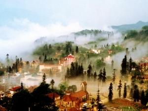 Green Valley International Hostel