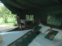 Hondo Hondo Udzungwa Forest Tented Camp