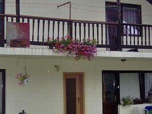 Hostel and Guest House Rose