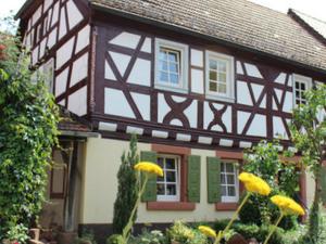Hostel Gluehwuermchen