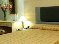 Hotel Ornet