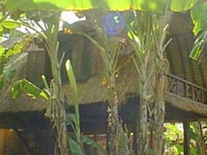 Lumbung Damuh