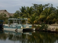 Palmento Grove Hopkins