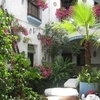 Senses&Colours Seneca Hostel