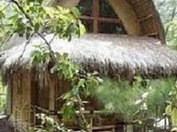 Tao Kombo Travel Lodge