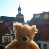 Teddy Bear Hostel Riga