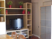 Turia Apartment
