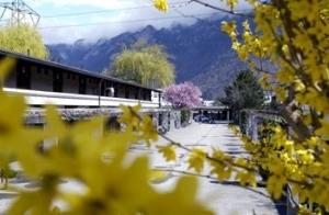 Best Western Hotel Sommerau