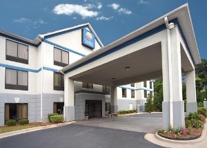 Comfort Inn And Suites Peachtr