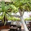 Life Wellness Resort Quy Nhon