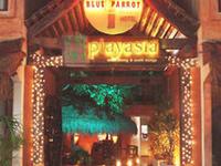 Blue Parrot Fifth Avenue