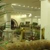 Lti Pyramisa Beach Resort Hote