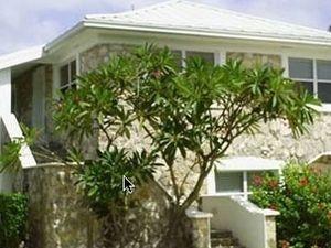 Hut Pointe