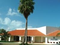Raintree Villa Vera Isla Mujer