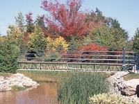 Mountain Springs Resort
