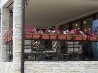 Hotel Avis
