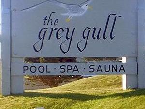 The Grey Gull