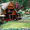 Krisdadoi Chiangmai Aprime Res