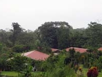 Volcano Lodge and Gardens