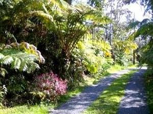 Mahalo Hawaiian Retreat