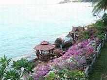 Golden Cliff