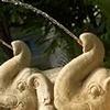 Citin Garden Pattaya